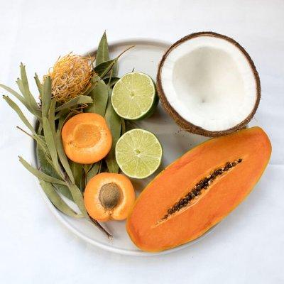 Plato de papaya con coco